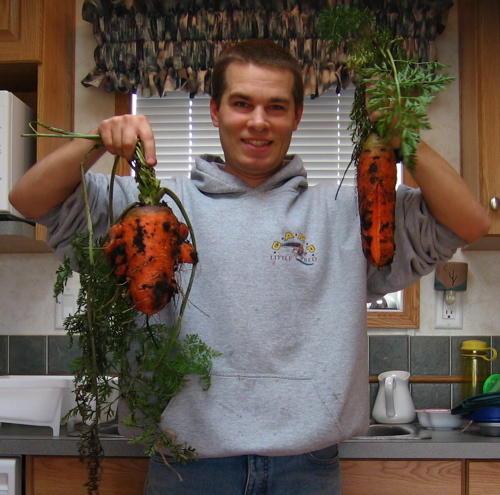 Scarlet Nantes and Red Danver Carrots