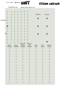 Straw Garden Plan 2008 (pdf)