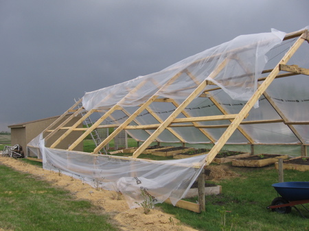 Greenhouse plastic ripped in two