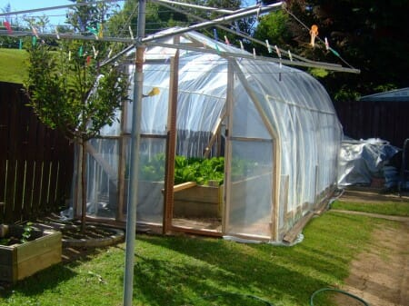 Hoop Frame Greenhouse in New Zealand